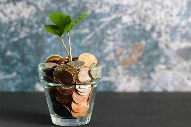 A photo of a small money tree inside a jar of pennies