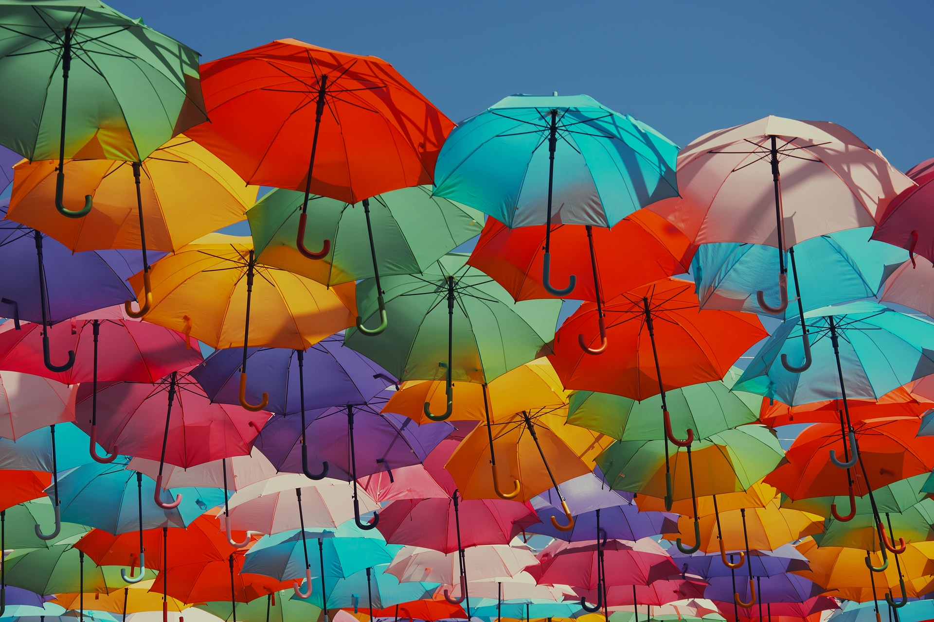 how to keep your guests cool in summer picture of lots of coloured umbrellas with the celebrant angel